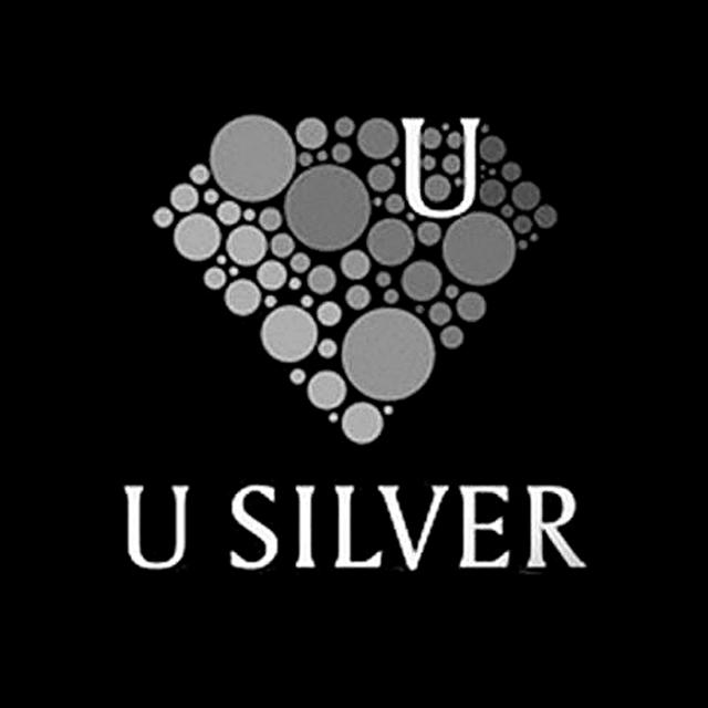 U Silver (M) Sdn Bhd